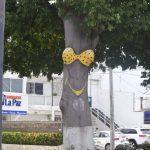Feministas no quieren sigan pintando árboles con forma de bikini