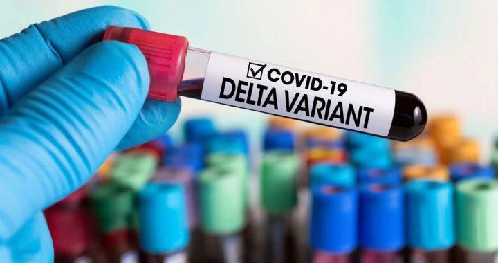 Covid-Delta contagia a vacunados y a su vez, son muy contagiosos